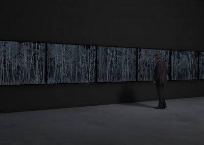 Pillars of Dawn (forest I-VI prints)